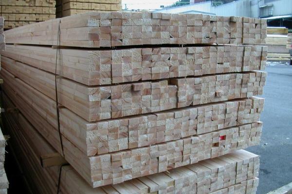 latten3FF03EC4D-5A56-C3CB-4CC1-E17637945E72.jpg